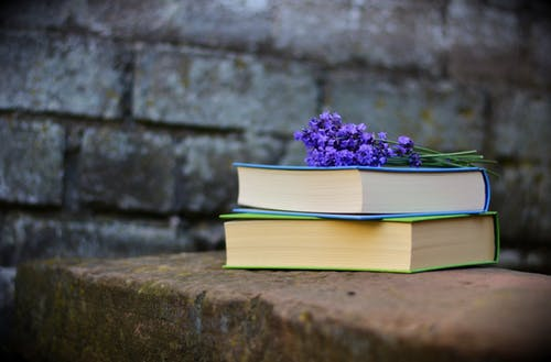 two books with flowers on top; image by Pixabay